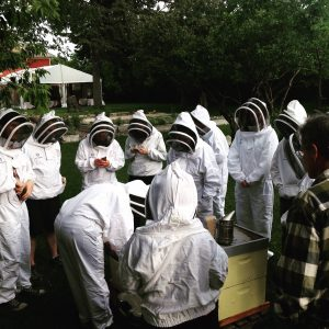 Level Two Beekeeping Certificate