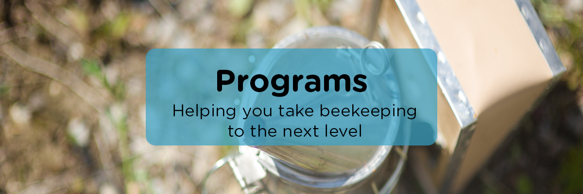 Programs-ABCBees
