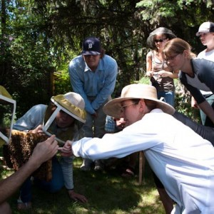 A group inspects a honey comb on a Field Day