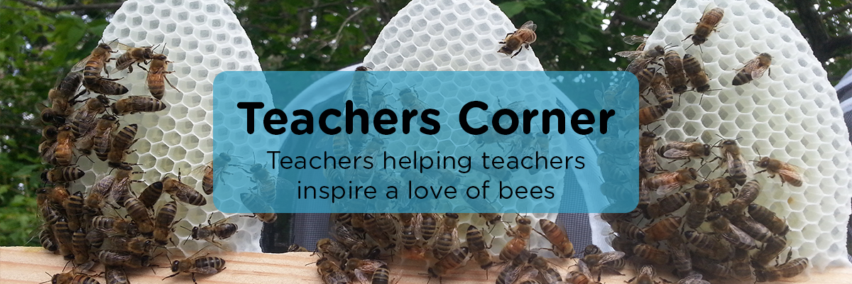 TeachersCorner